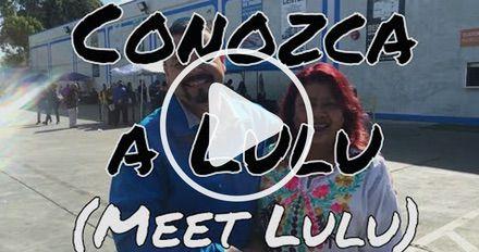 Meet Lulu