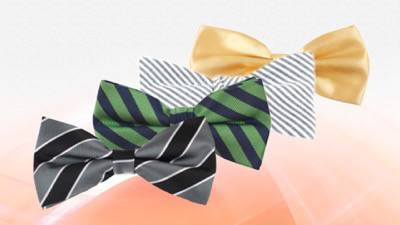 LiquidateNow | Wholesale Silk and Cotton Bow Ties