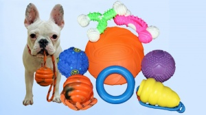 New Overstock Assorted Dog Toys