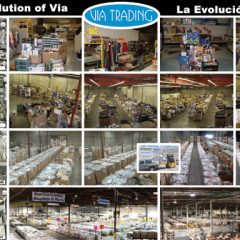 EVOLUTIONPOSTERsmall